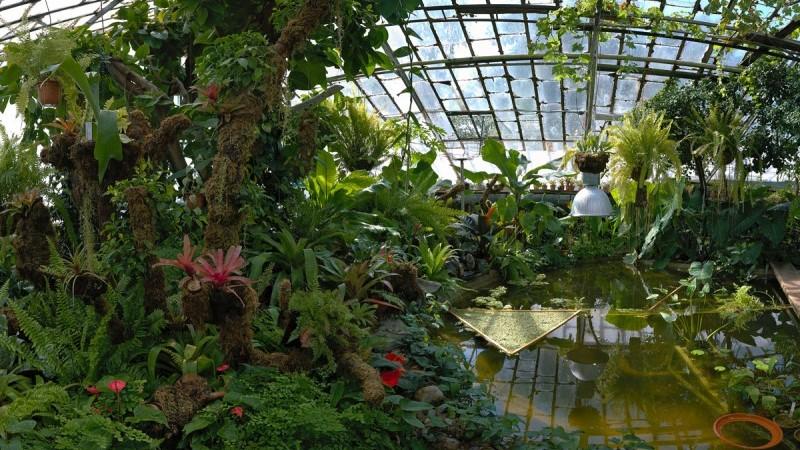 The Siberian Botanical Garden